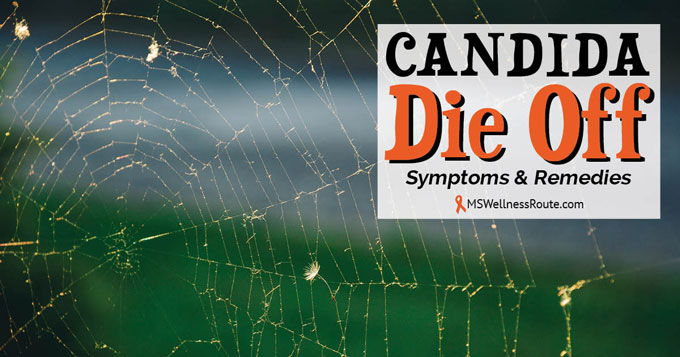 Candida Die Off - MS Wellness Route