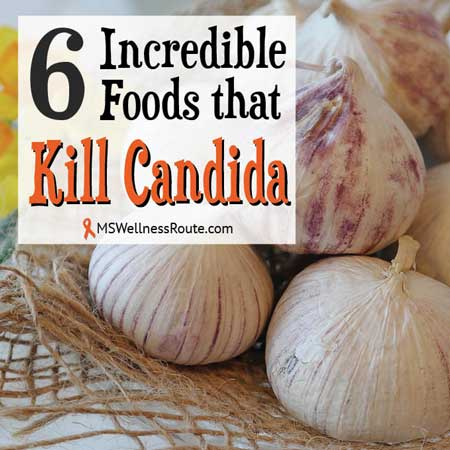 6 Incredible Foods That Kill Candida - MS Wellness Route